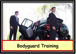 Boydguard / Close Protection