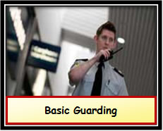 Basic Gaurding or Static Guard